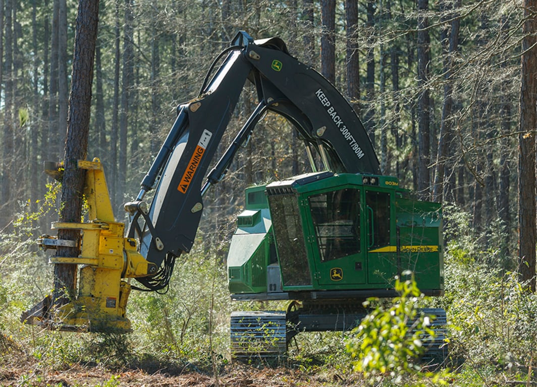 803m Tracked Feller Buncher working in the forest