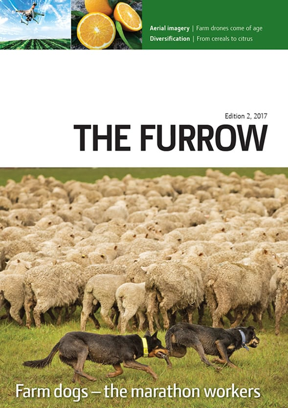 The Furrow - Issue 2, 2017